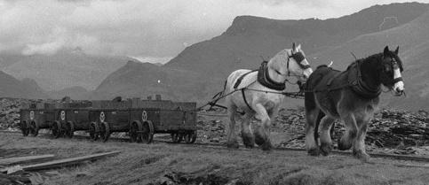 NantlleRailway1959.jpg
