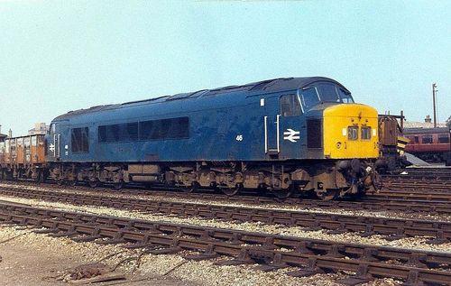 class45no46.jpg