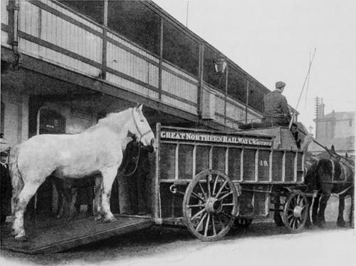 GNR_Pferde-Ambulanz_1910.jpg